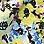 gentiaanblauw/geel/zwart