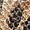luipaard/zwart